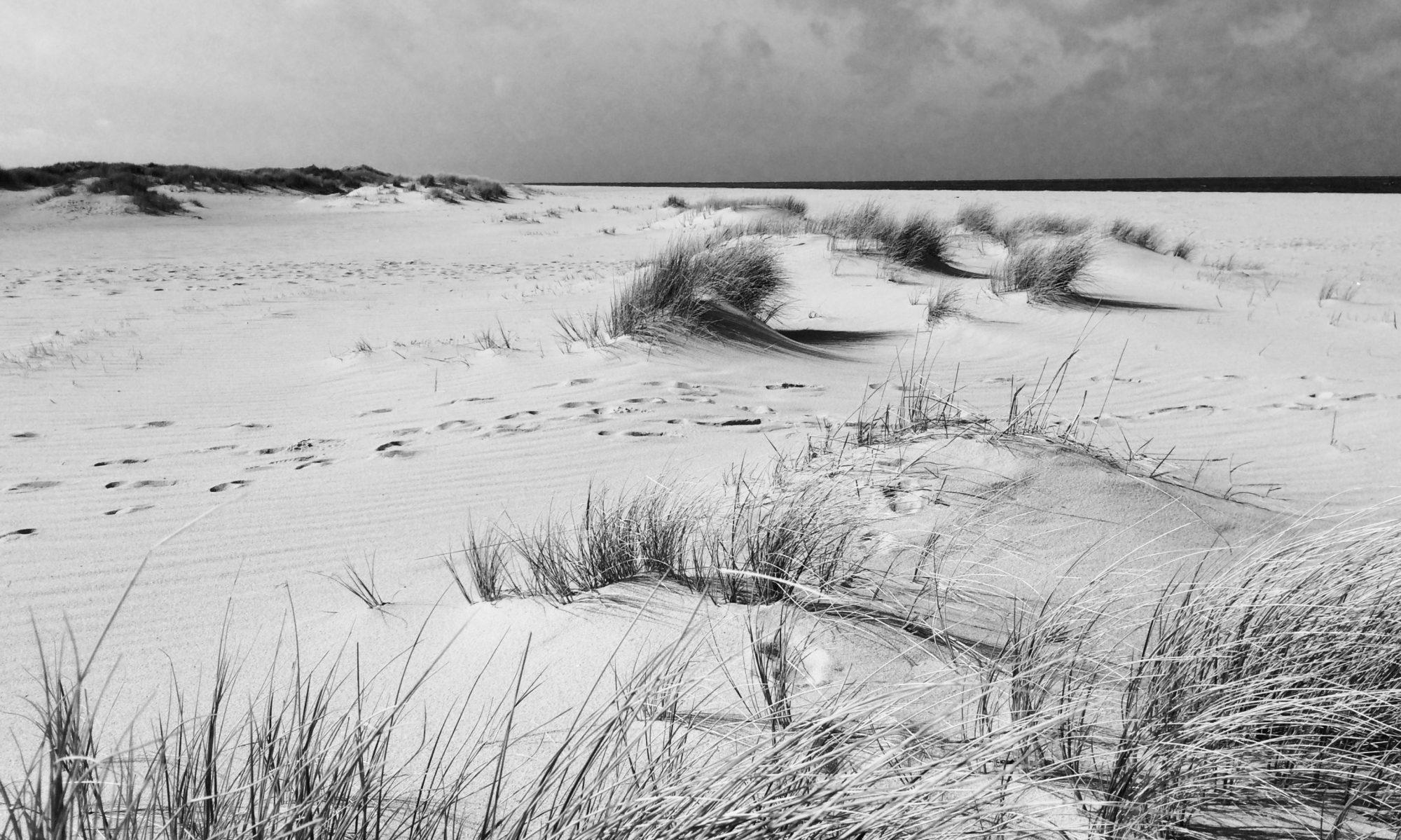 Disc Golf Küste